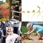 4 Images 1 Mot 7 Lettre Mots Solution