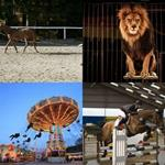 solution MANEGE