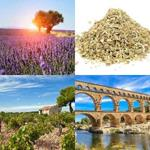 solution PROVENCE