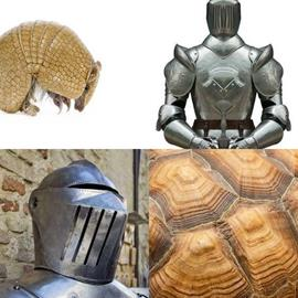 solution ARMURE