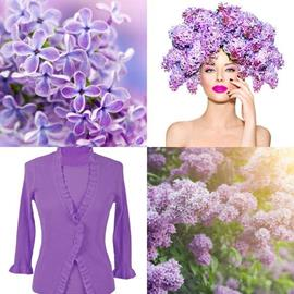 solution LILAS